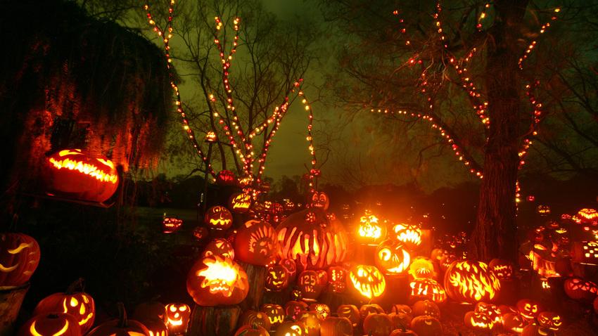 5 images sur l'Halloween