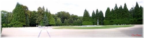 Vue Panoramique de la clairière