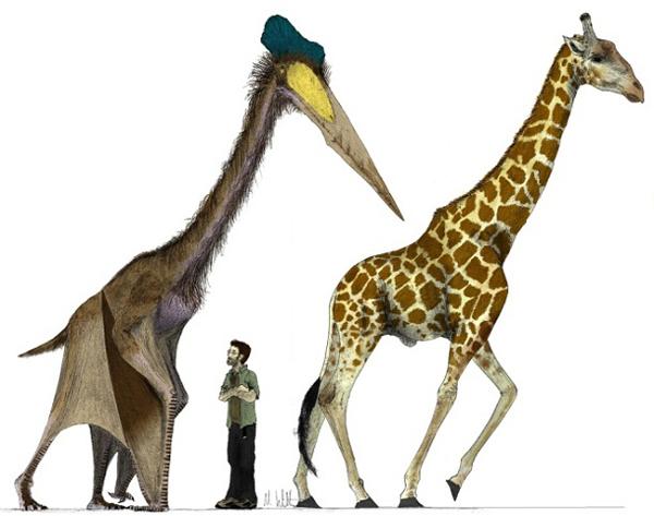 préhistoriques créatures-animaux-6