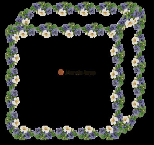cadres fleurs 3
