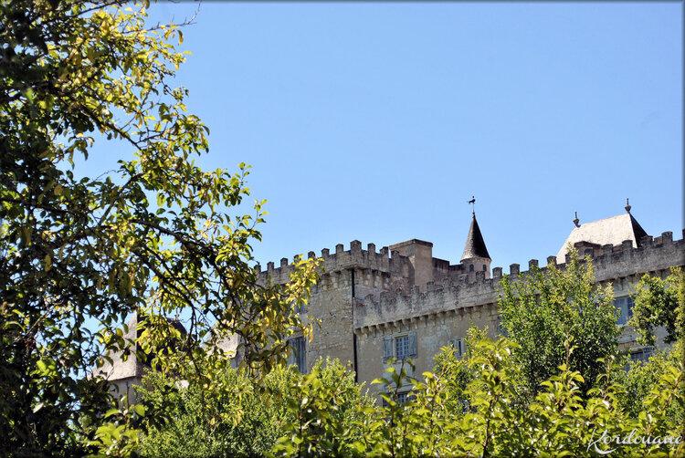 Photo de la toiture du Château de Vayres (Gironde)