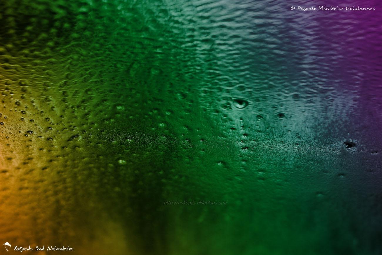 Jeu d'eau et de couleurs...
