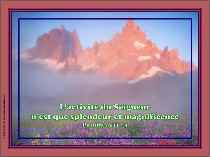 L'activité du Seigneur n'est que splendeur et magnificence - Psaumes 111 : 3