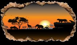 tube Afrique