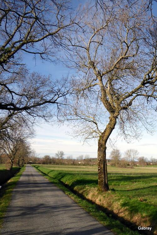 Verdalleen 81 : paysages en février