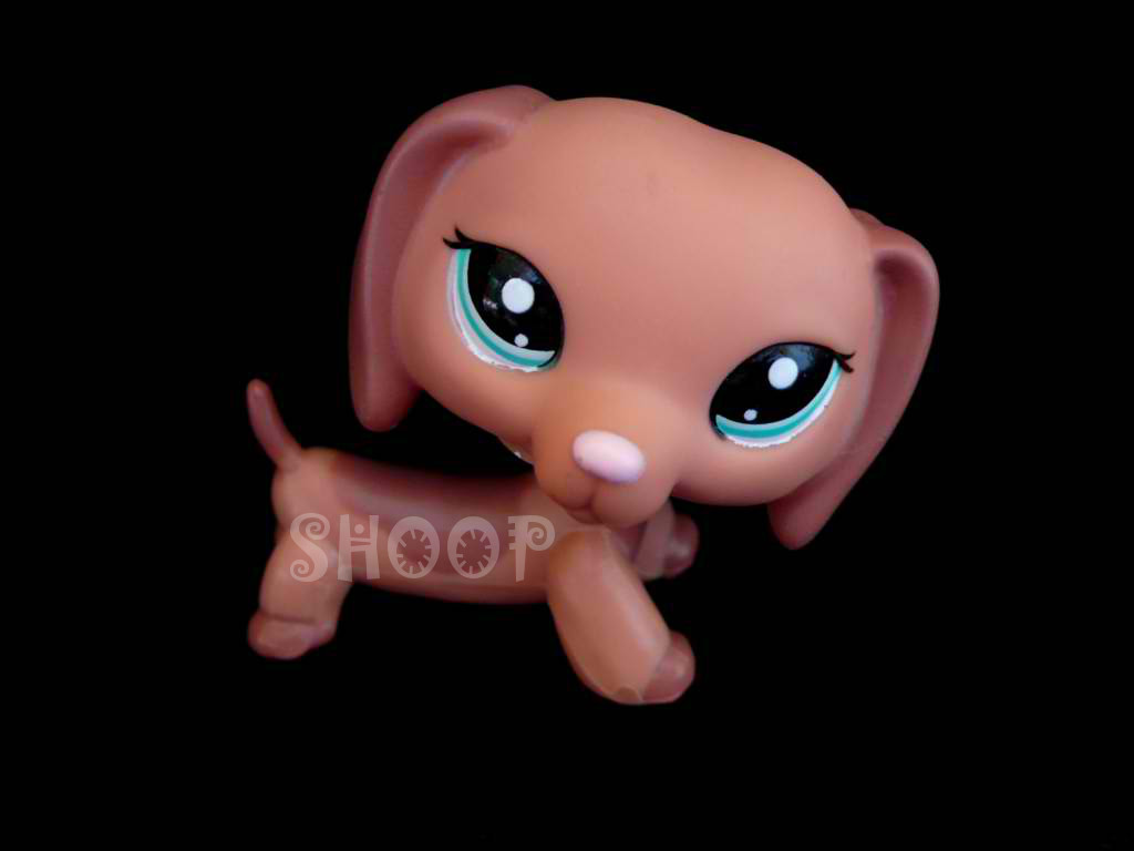 LPS 2046