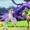 onchao et les licornes de la nature