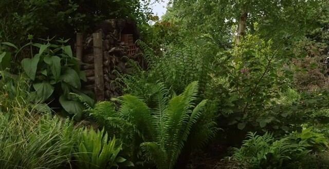 Jardin Jardinier : La Bosquerie en Normandie