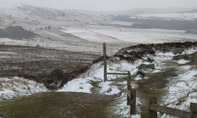 Neige en Monts d'Arrée 087