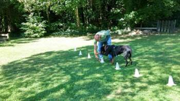 Les Cani-vacances de TYSON et de sa famille!