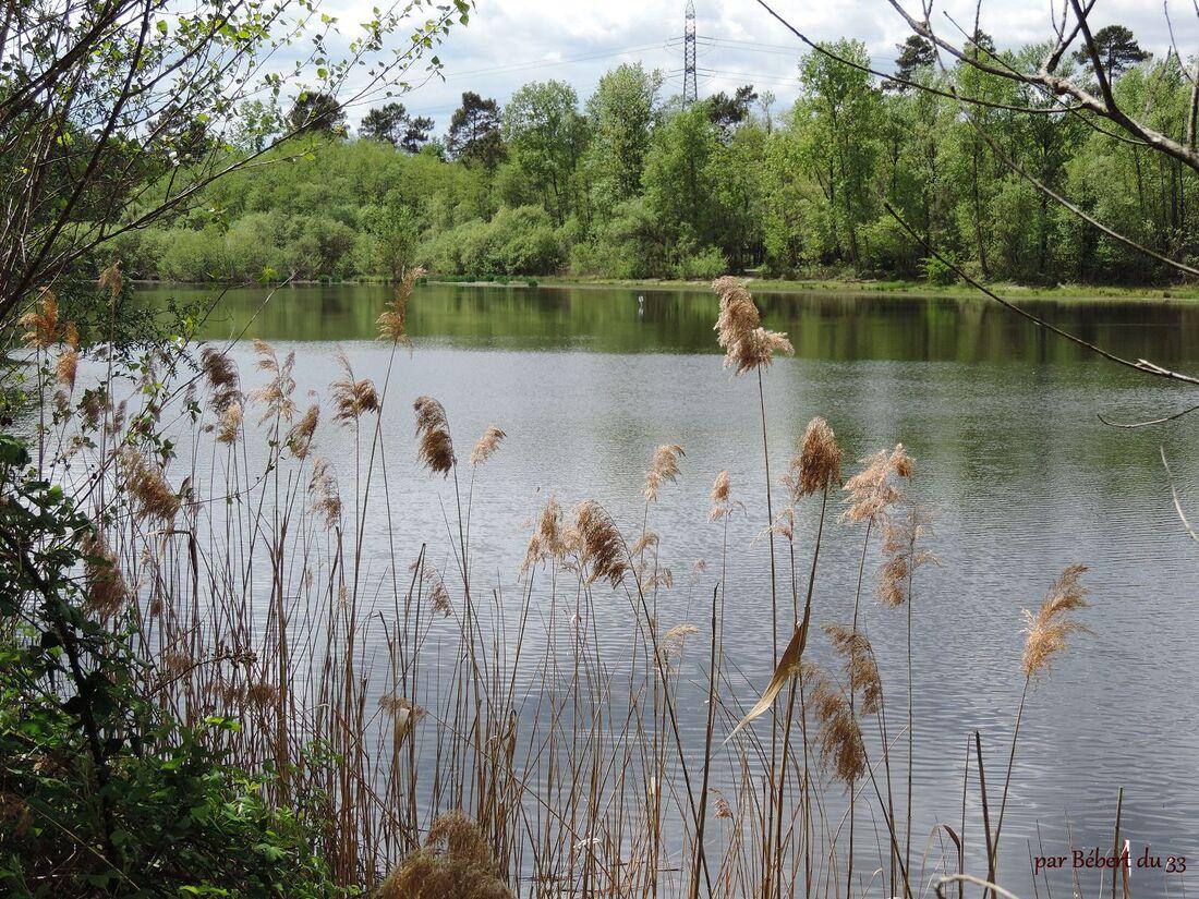le lac de Saint-Christoly (33)
