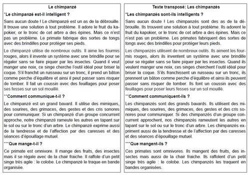 Grammaire au jour le jour : textes et transpositions pour petits cahiers