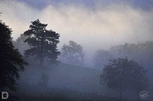 Estampes de brume en Corrèze