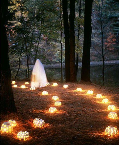 L'image contient peut-être: nuit, plein air et nature