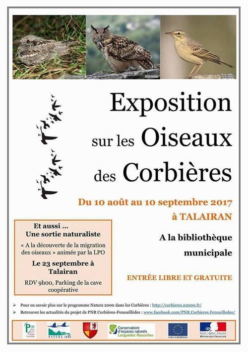 Expo sur les oiseaux des Corbières