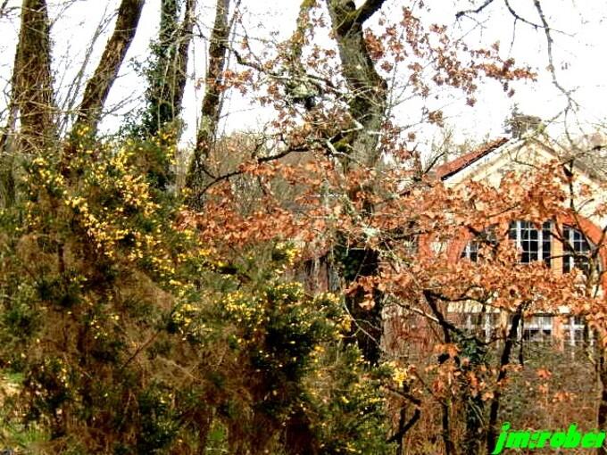La petite randonnée ou une balade au pied de Limoges