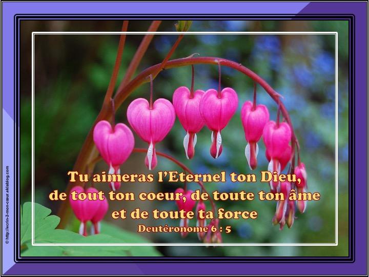 Ronde Versets du coeur 165