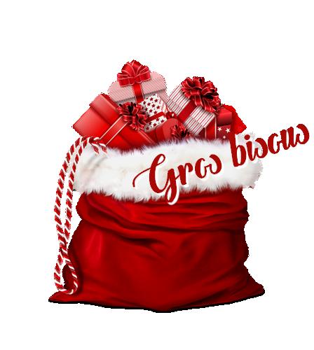 Bonnes  Fêtes de Noël à Tous..