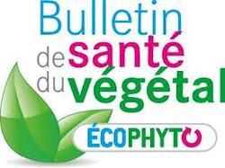 La santé des végétaux