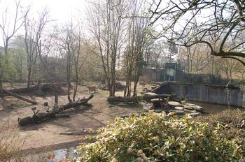 zoo cologne d50 2012 069