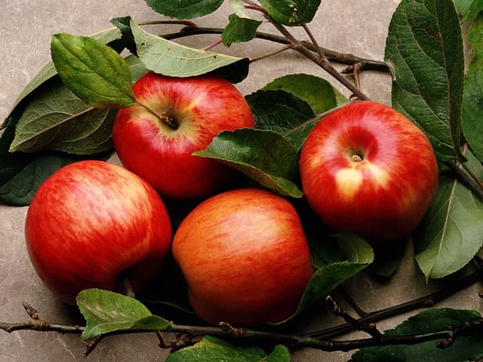 Сахар в крови яблоки