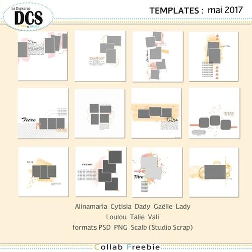 DCS Template Mai 2017