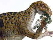 Musée de l'Iguanodon - Bernissart (B)