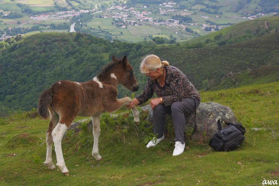 Ossès, le dernier billet : Fabuleuses photos
