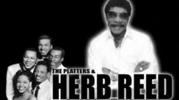 Herb Reed flash info