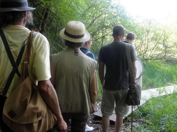 Le marais tufeux de Chamessin (Haute Marne)