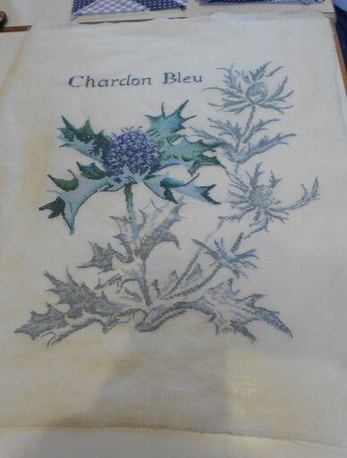 Joli chardon bleu.