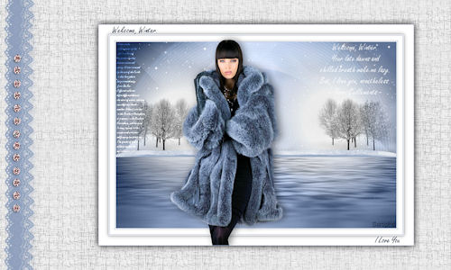 *** WELCOME WINTER ***