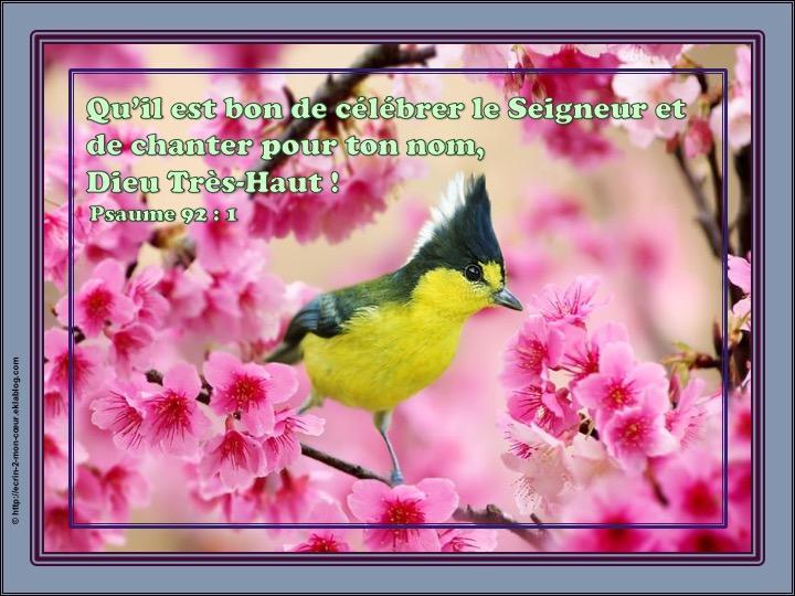 Qu'il est bon de célébrer le Seigneur - Psaumes 92 : 1