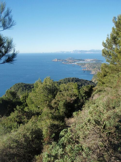 L'île des Embiez, au loin, la Ciotat et les Calanques