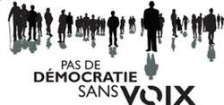 LE DIFFICILE RÔLE DE L'ELECTEUR !