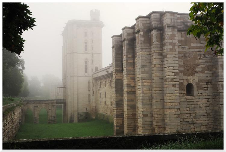 Châteaux de Vincennes sous le brouillard.