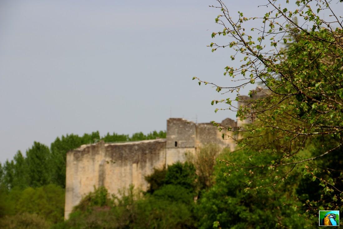 Rauzan et son château féodal