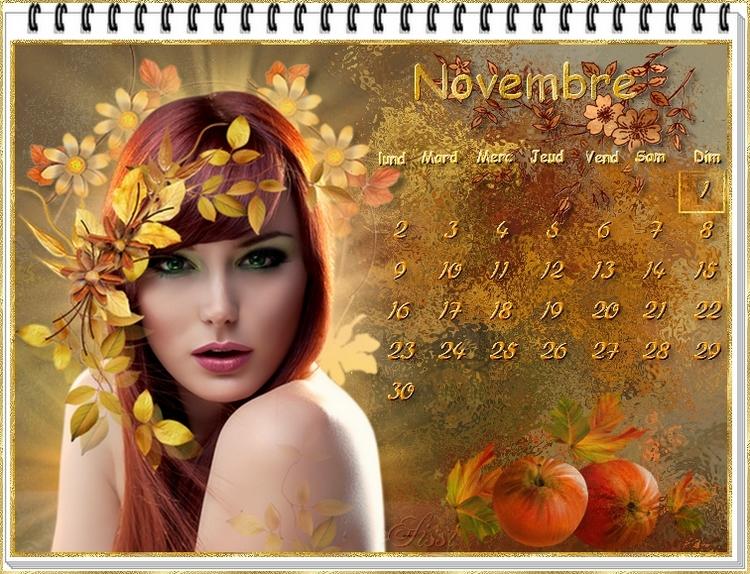 Coups de Cœur du mois de Novembre 2020