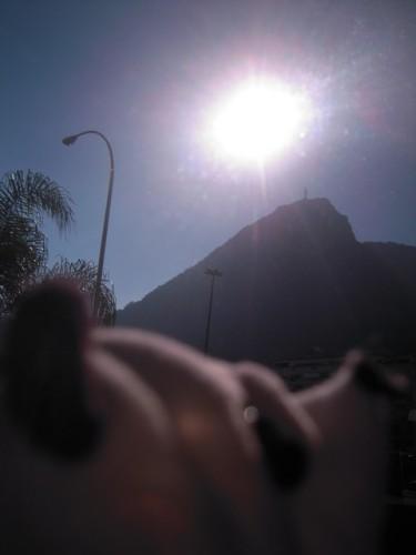 un panda à Rio 045