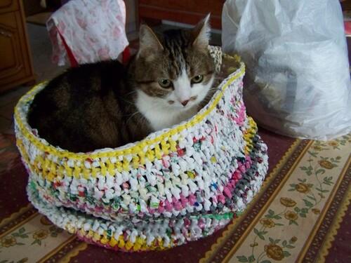 Un sac plastique au crochet