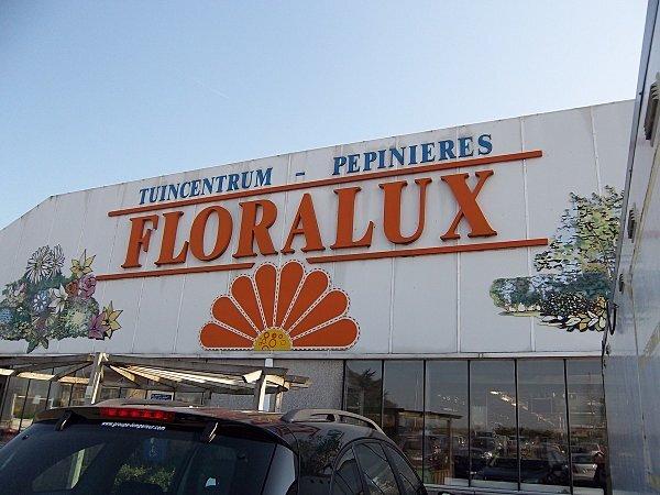 floralux--5-.JPG