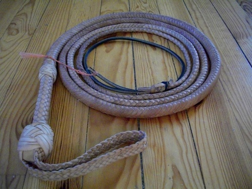 10ft cowhide indy bullwhip: ending