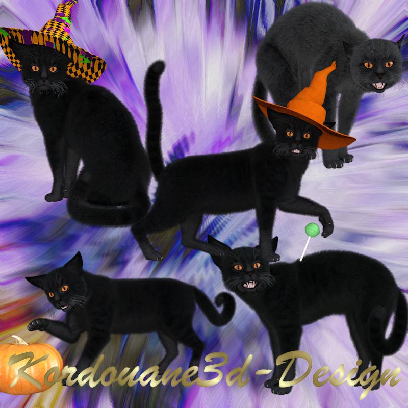 Image de chat de sorcière (render-tube)