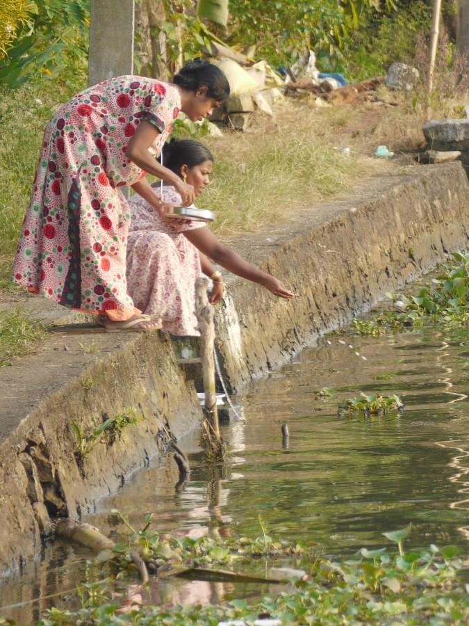 Croisière sur les Backwaters du Kerala -Inde du sud (2)
