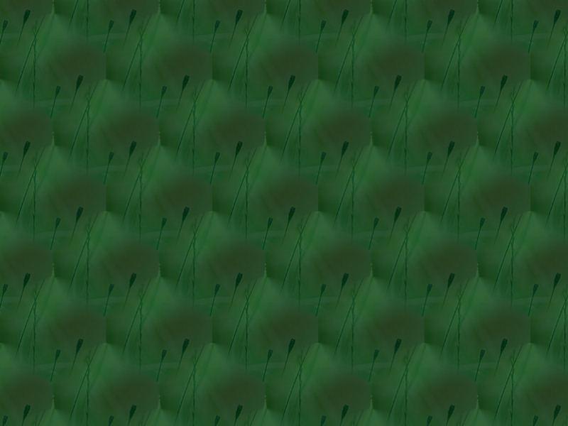 Papiers vert 1