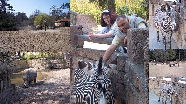 2012-03-26-zoo10.jpg