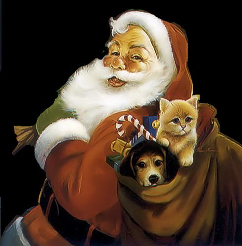 Pères Noël Série 7