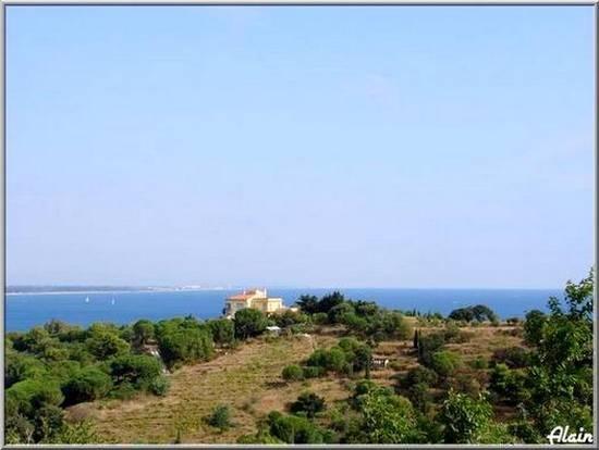 La_cote_Collioure_1