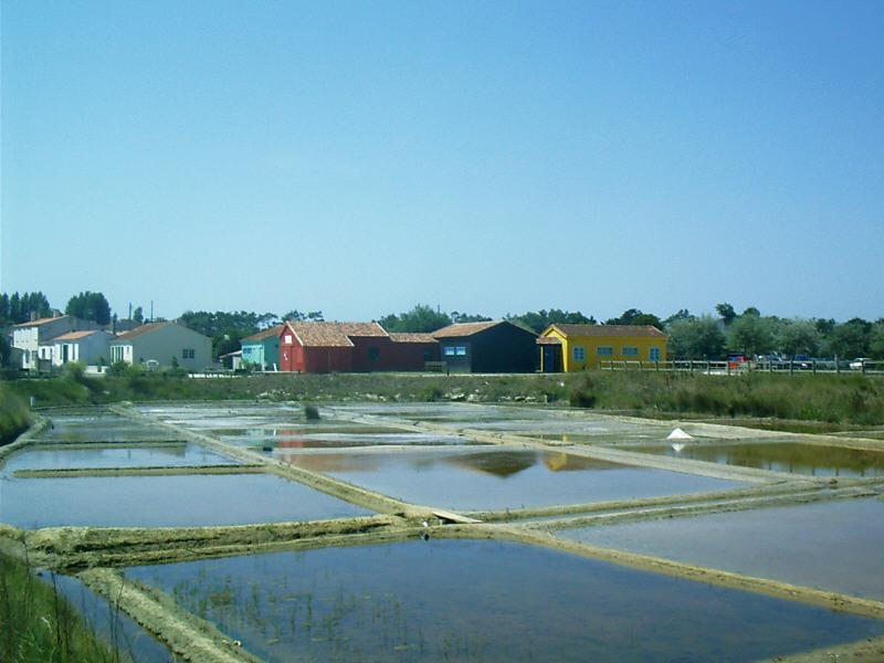 Port de Salines.JPG