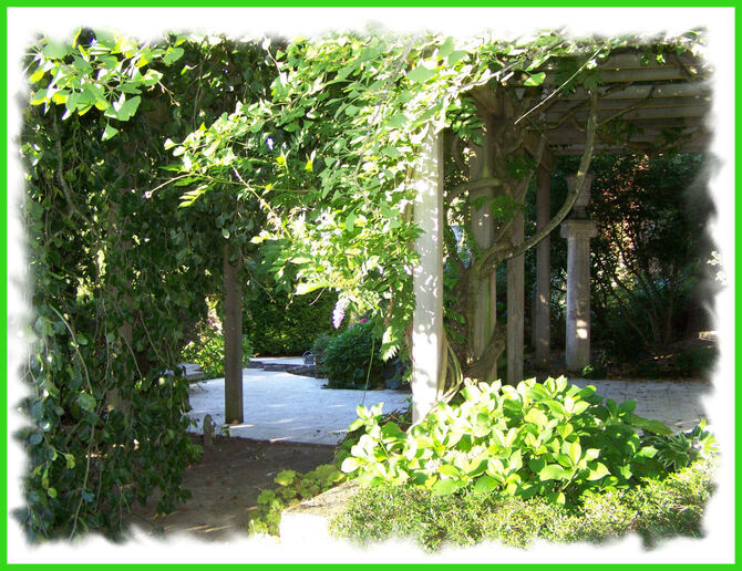 Au jardin ....... suite et fin